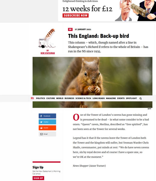 Screenshot_2021-02-18 This England Back-up bird.png