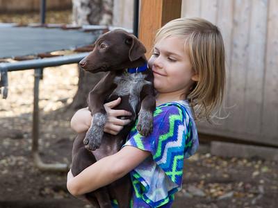 Maruskie Puppies #3 - 2014