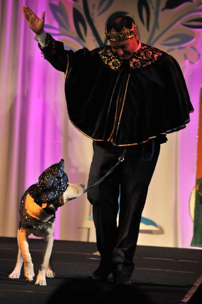 2012-11-10 2012 Fetching Ball 125.JPG
