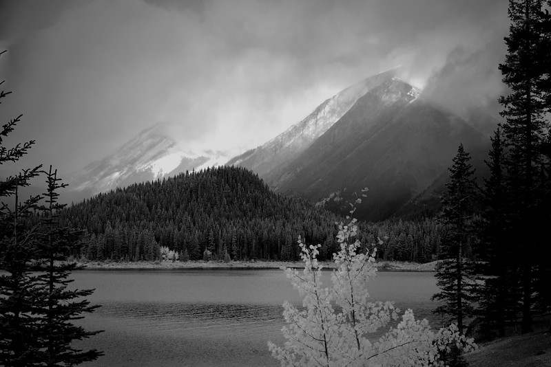 Soft Morning Light  in Kananaskis Country, Alberta