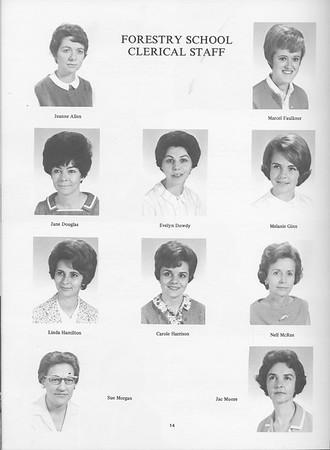 1968 Cypress Knee