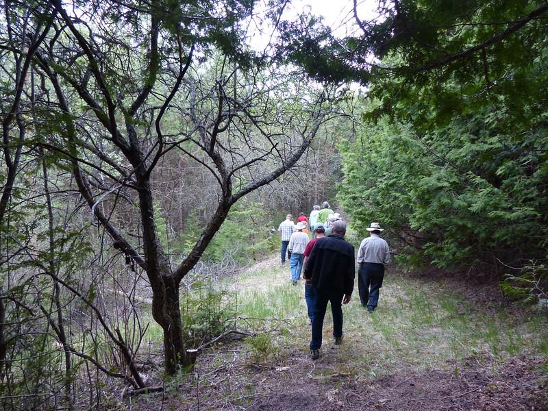 WBFN members walking the trails