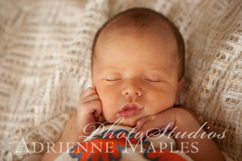 Beatrice {newborn}