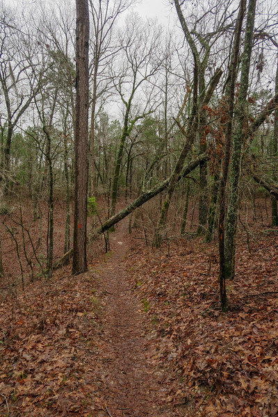 Hilltop/Lo Knot Trail