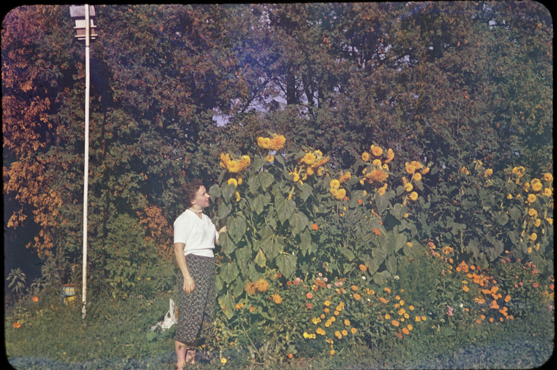 DSC_6529-1956 mont Bénilde.jpg