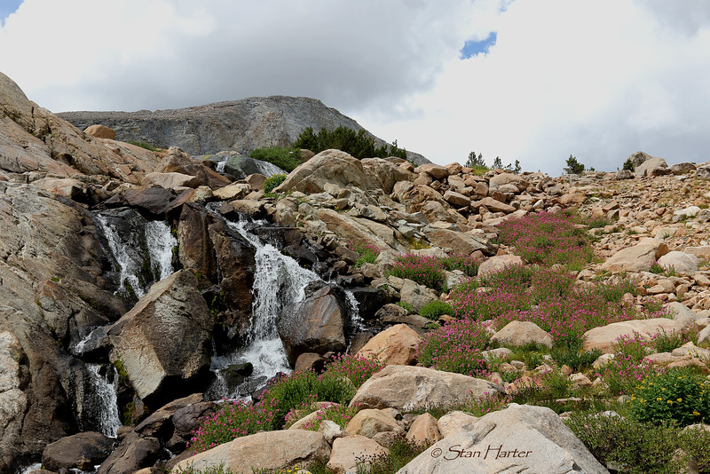 Atlantic Creek waterfall  .jpg