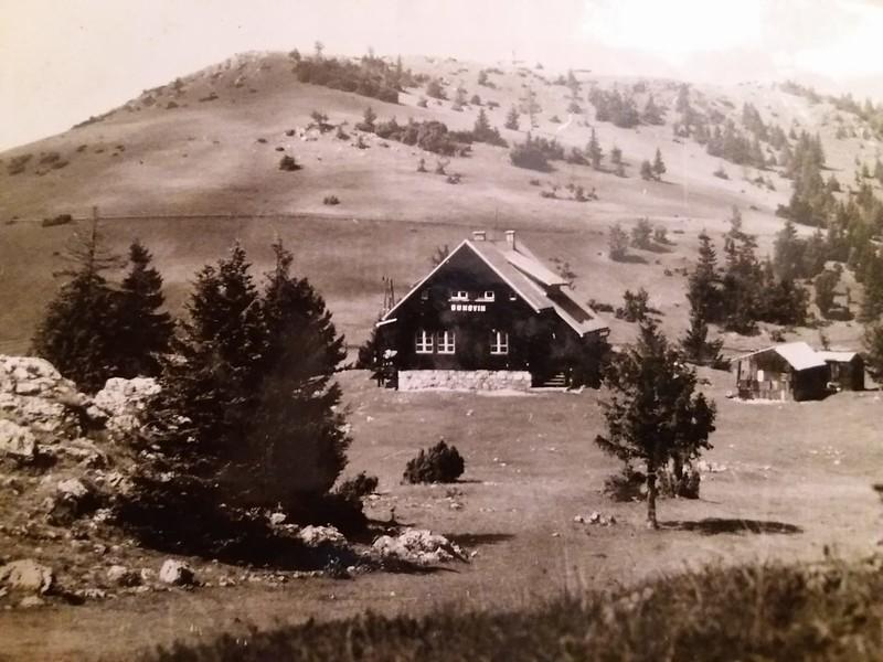 Bukovik-1981.jpg