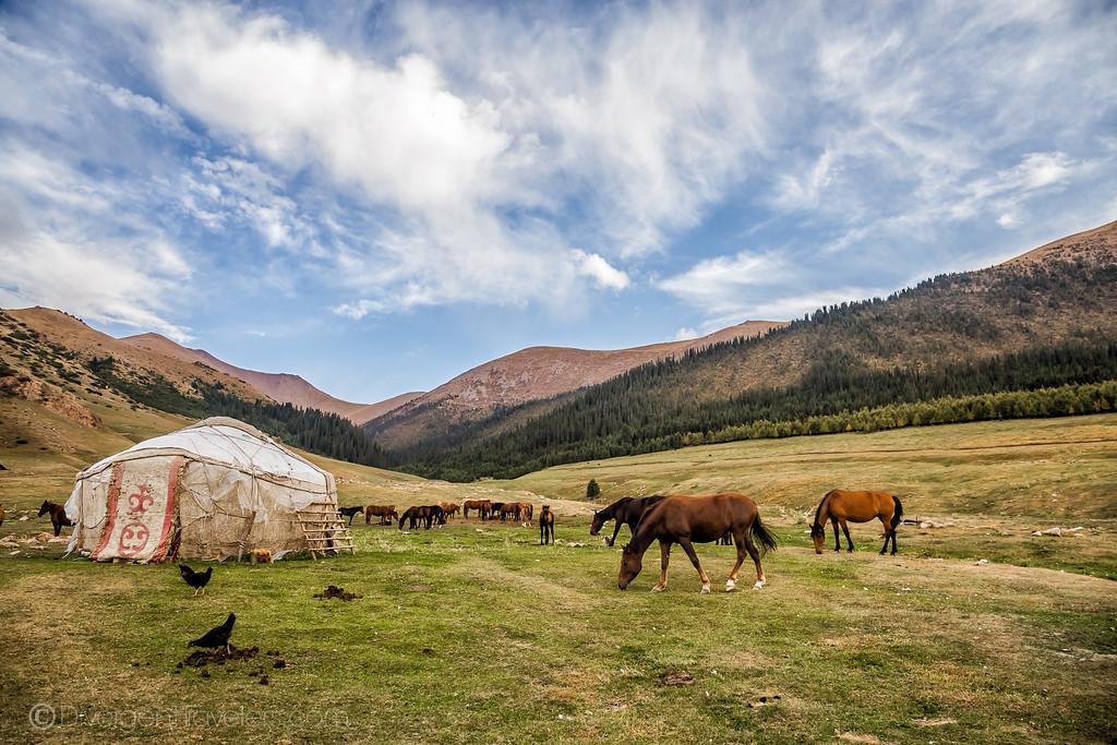 Kyrgyzstan Photos: Bokonbayevo Shatyly Horse Trek