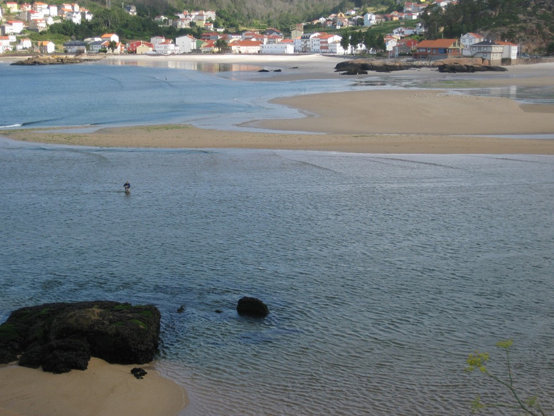 coastal area at low tide