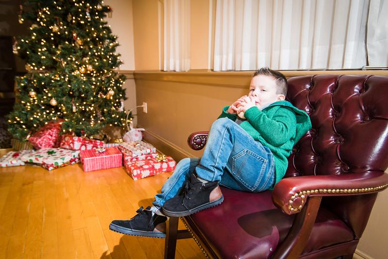 Bernardo Christmas 174.jpg