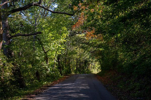 Autumn Along The Stillwater River  9-27-2013