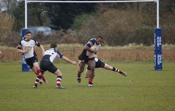 Mildenhall-Rugby