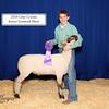 C Wyant Grand Lamb