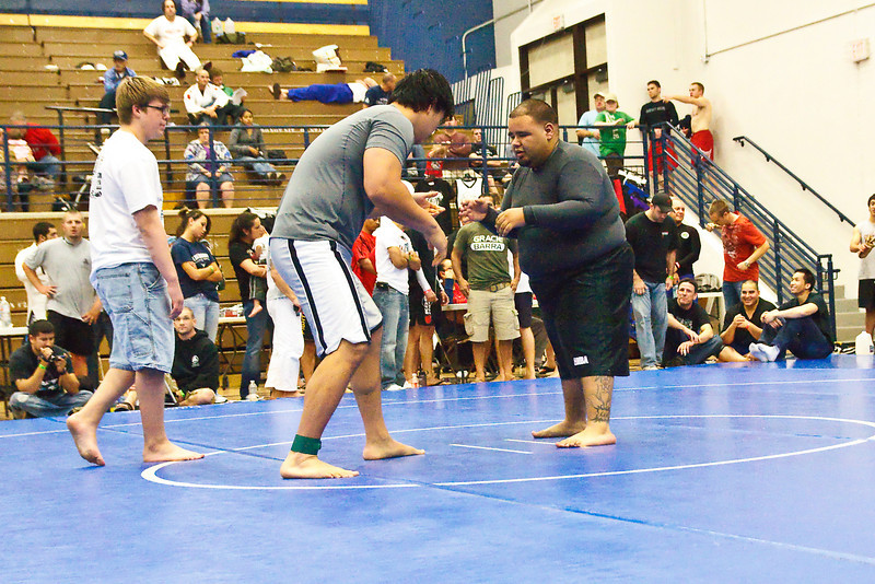 MMA_Houston_20090418_0980.jpg