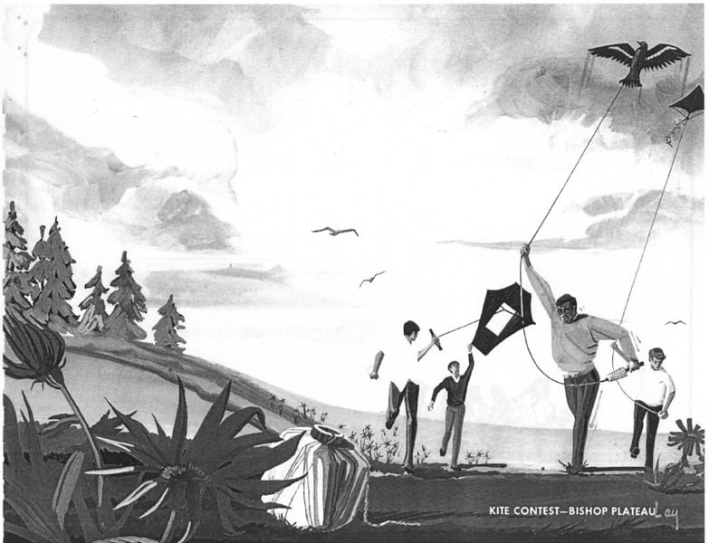 1971, Kite Contest