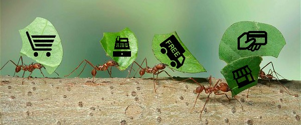 blog-microservices-ant.jpg