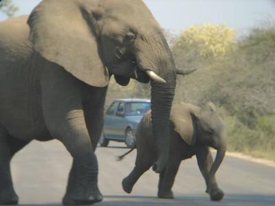 South Africa September 2004