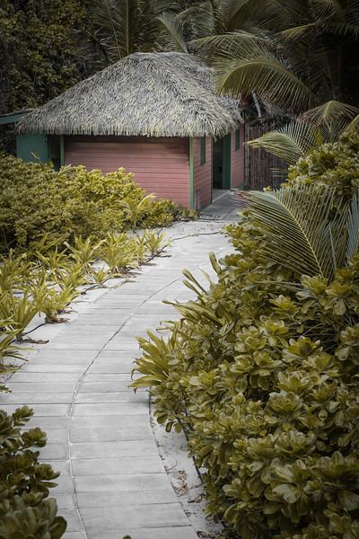 Tiki Hut Path.jpg