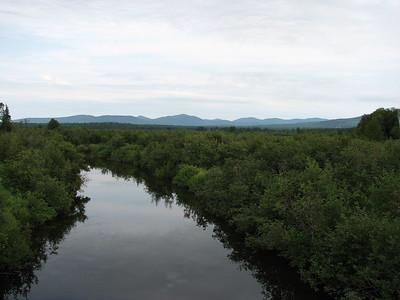 Lac Megantic Swamps