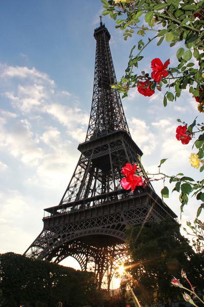 Paris 2014-8935.jpg