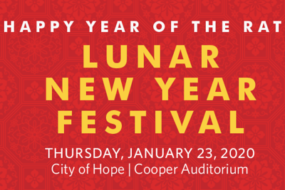 2020 Chinese Lunar New Year Festival