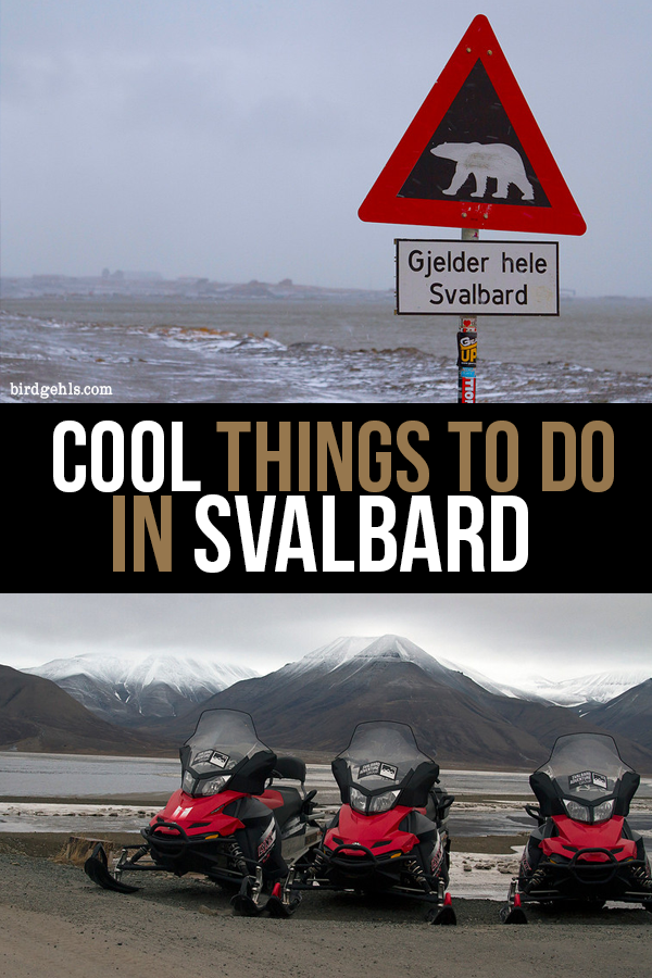 Hiking, kayaking, dog sledding, snowmobiling - these are just some of the things to do in Svalbard (Norway). There's an option for every traveller, for sure.