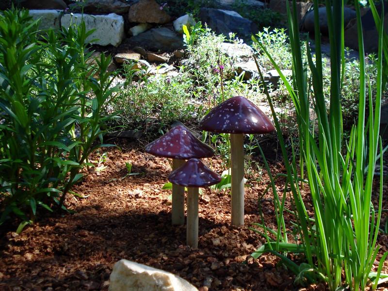 Grandma's Mushrooms 07-04-2010