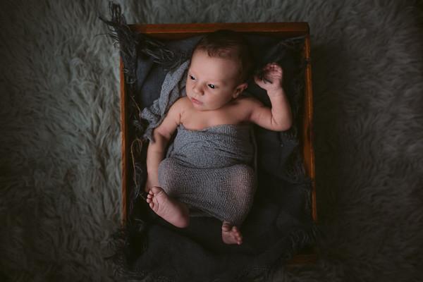 lm-newborn