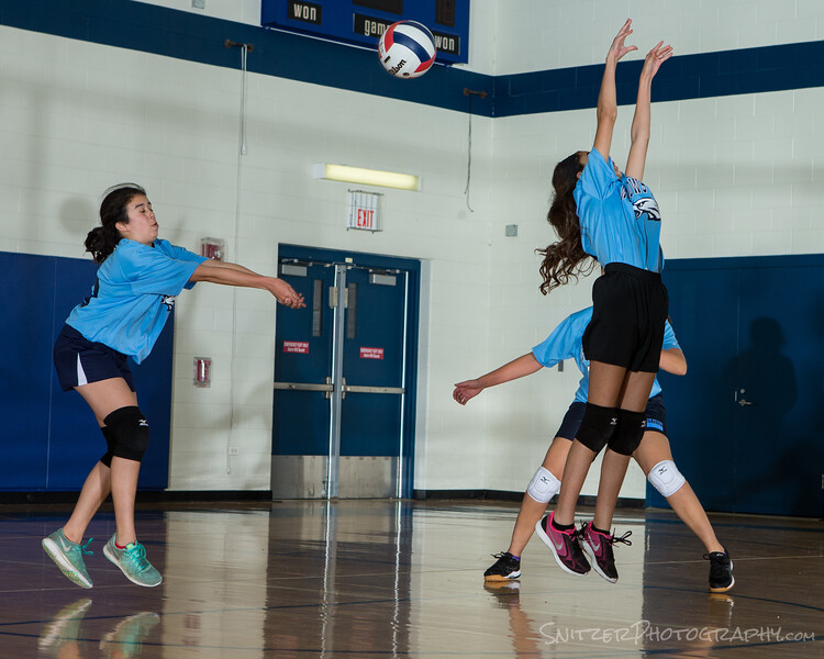 willows middle school volleyball 2017-1060.jpg