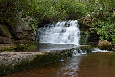 Mill Creek - 15 April '17