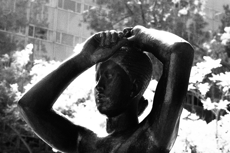 October 8 - Franklin Murphy Sculpture Garden_ UCLA.jpg