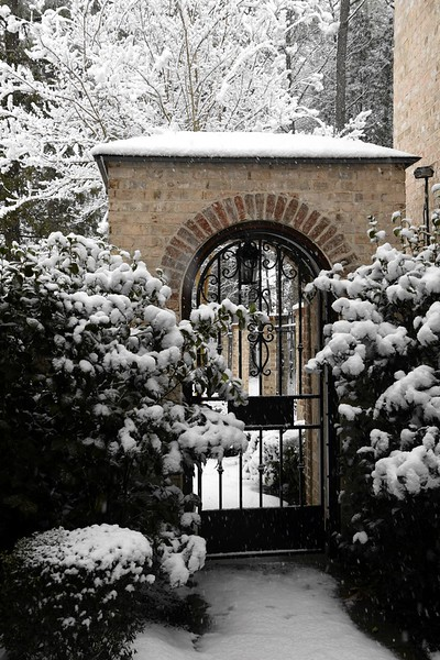 snow_o1_2018_003.jpg
