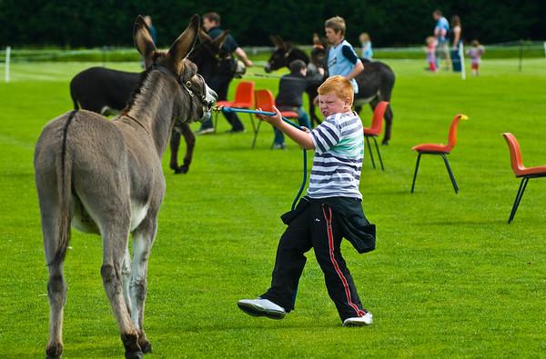 Donkey Derby - Lurgan - Northern Ireland