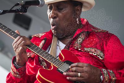 Blues Heritage Festival Tucson 2015