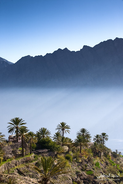 Oman (26).jpg