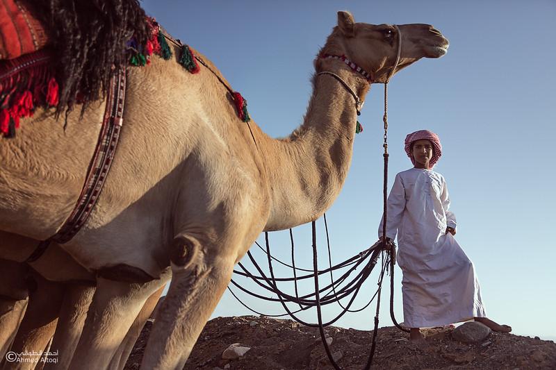 FE2A3516-4- Camel Race.jpg