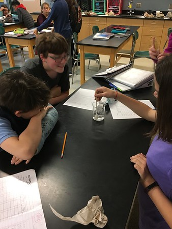 2017 May 6th Grade Salt Saturation