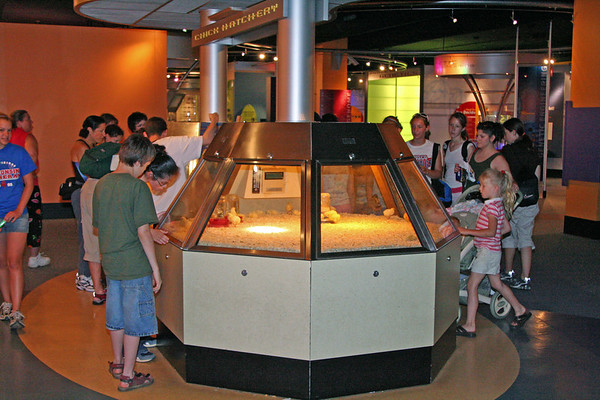 Chicago Museum of Science & Industry - May  2006