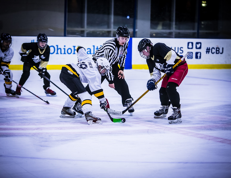 Bruins-205.jpg