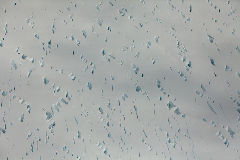 Alaska Icy Bay-3577.jpg