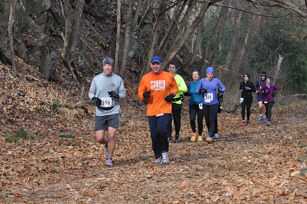 Northern Central Rail Trail Marathon, Nov 2013