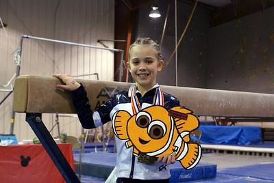 Gymnastics Meets 2008-2009