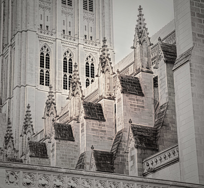 National Cathedral - January 2020
