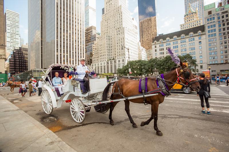Central Park Wedding - Beth & Nancy-155.jpg