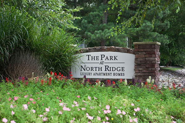 The Park 2013
