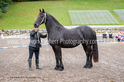 Friesian Lecture