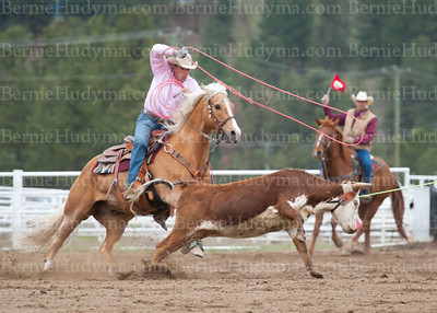 Tie-Down & Team Roping