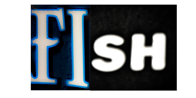 fish_.jpg