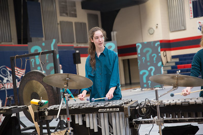 Littlestown Gold Percussion