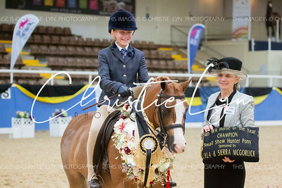 Class 36: Small Show Hunter Pony 12 hh & under